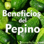 Pepinos verdes