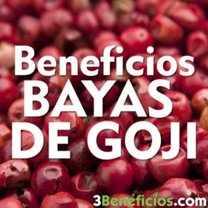 Beneficios Bayas de Goji