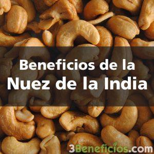 Semillas conocías como Nuez de la India